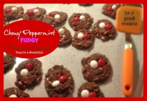 Chewy Peppermint fudgy brownie cookies
