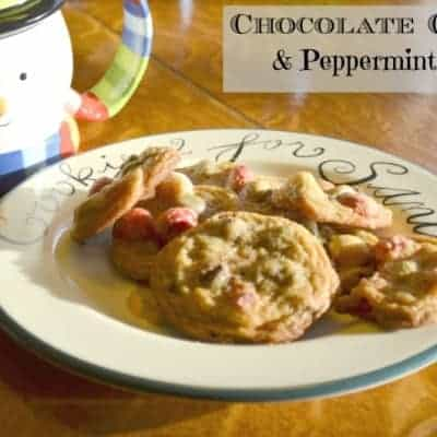 Cookies & Crafts for Sandy Hook {Chocolate Chip & Peppermint Cookies}