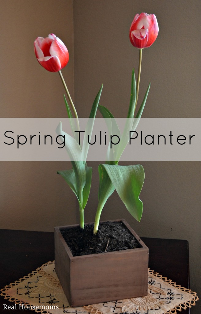 Spring Tulip Planter | Real Housemoms | #DIYplanter #woodenbox #agedwood