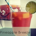 Pineapple Breeze Real Housemoms