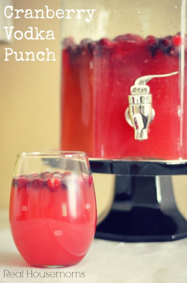 Cranberry-Vodka-Punch.jpg