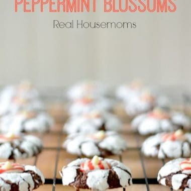 chocolate crinkle peppermint blossom cookies