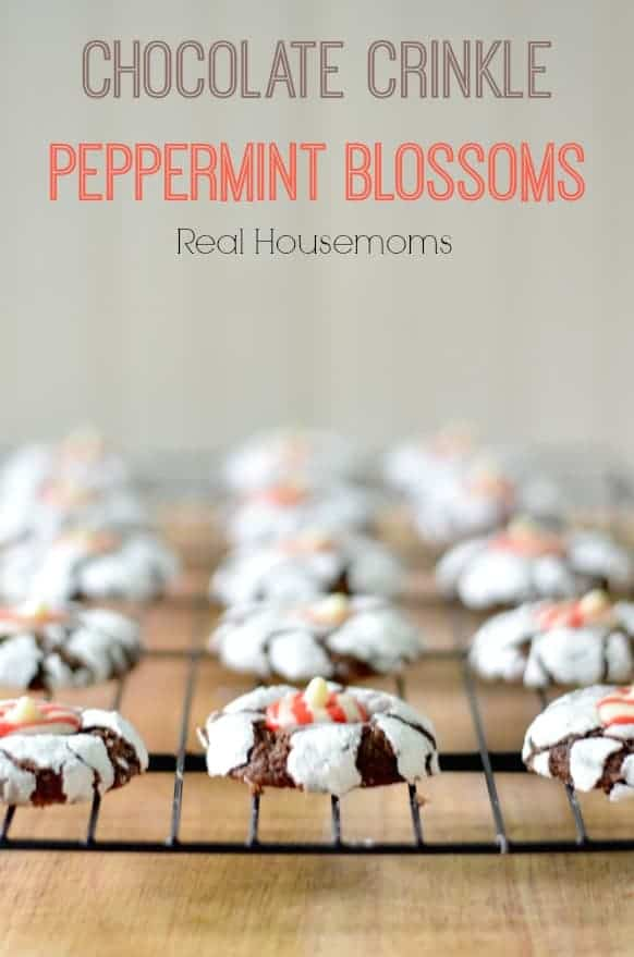Chocolate Crinkle Peppermint Blossoms_Real Housemoms