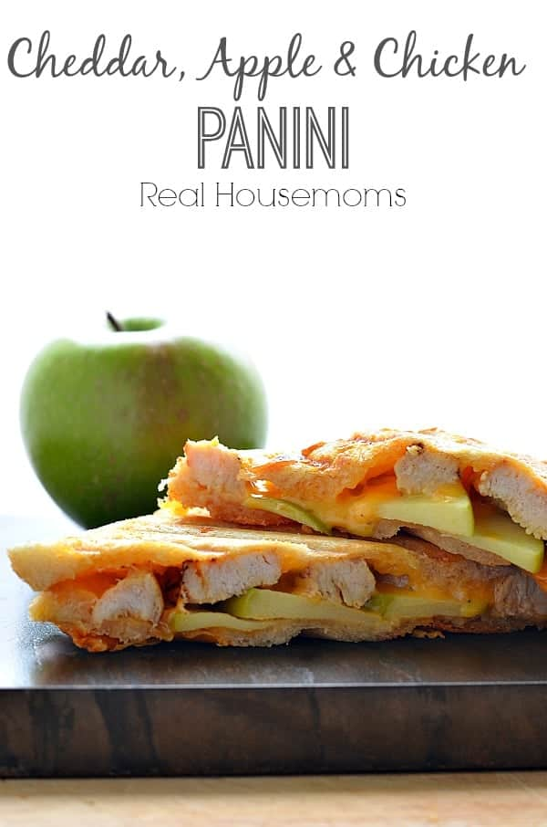 cheddar, apple and chicken panini