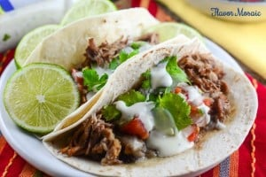Zesty-Ranch-Pork-Carnitas-15-WM.jpg
