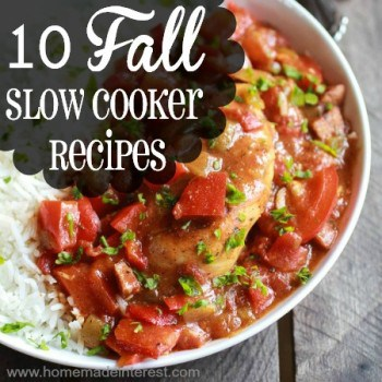 10 Fall Slow Cooker Recipes {www.homemadeinterest.com}