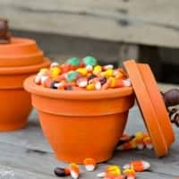 DIY Pumpkin Terracotta Pots spayed with Acrylic paint. Wooden knobs for the top