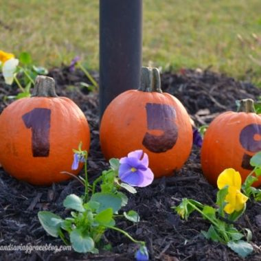 Easy Pumpkin House Numbers