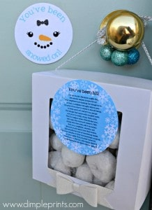 Youve-Been-Snowed-On-Free-Printables-from-DimplePrints