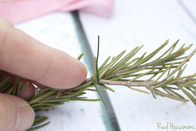 DIY Rosemary Wreaths | Real Housemoms