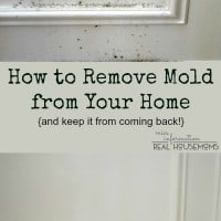 How to Remove mold in home wood paneling prevent mold from reoccuring. Photo of white molded Paneling