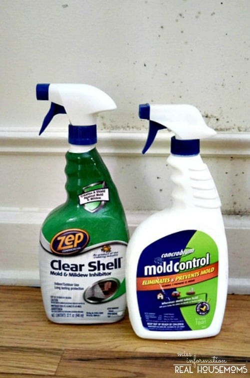 Remove Mold From Your Home And Keep It From Coming Back Real - Products to remove mold from bathroom