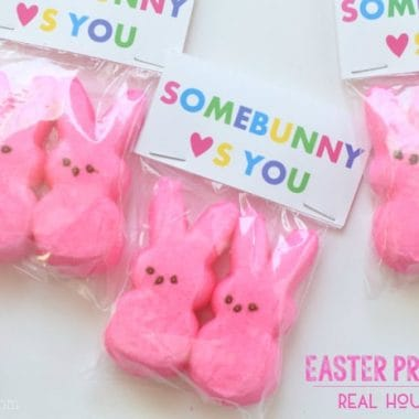 "Easter Printable for easter goody bags. Printable reads ""Somebunny (heart)'s you"" bag has pink easter bunny peeps inside printable stabled sealed bag"