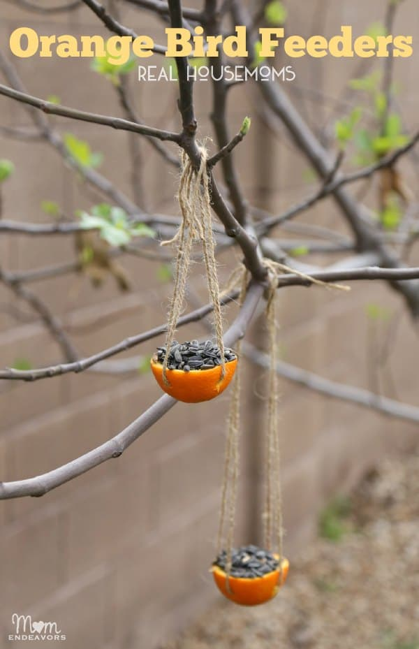 Orange Bird Feeders | Real Housemoms