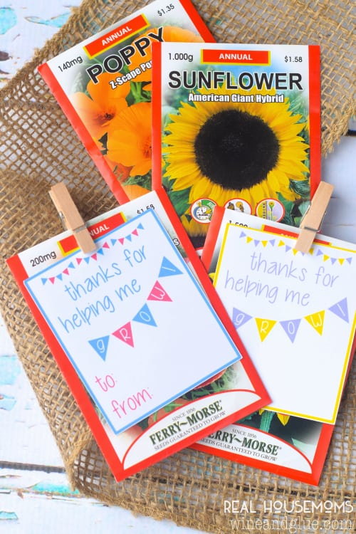 This Teacher Appreciation Printable is super cute, and super easy.  Attach it to a potted plant, some seed packs or a bouquet of flowers and done!