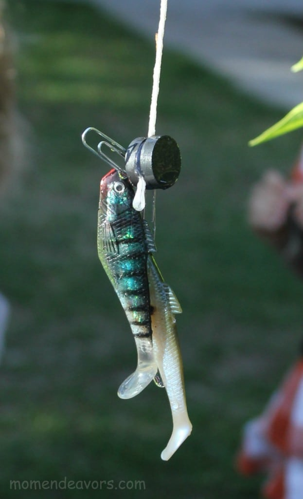Backyard-Magnetic-Fishing-623x1024
