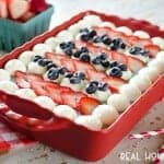 Red, White & Blue Berry Frozen Dessert