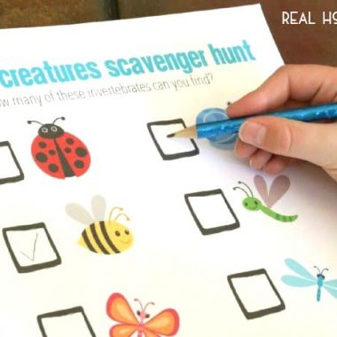 Bug Scavenger Hunt