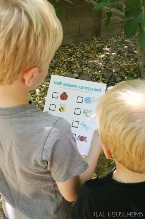"Need something to fight those dreaded ""I'm bored"" words from the kids? Try a bug scavenger hunt!!"