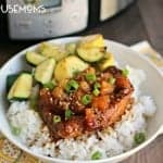 Slow Cooker Pineapple Teriyaki Chicken
