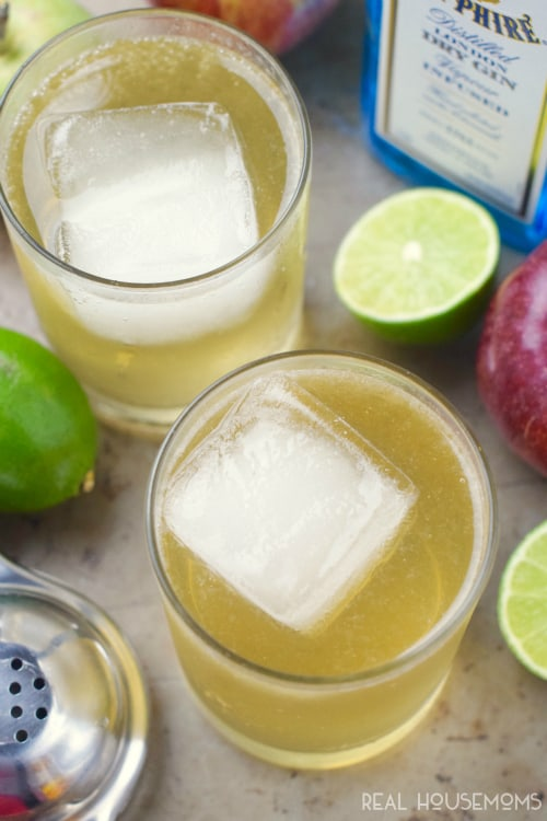 This Apple Tom Collins is crazy good! Maybe every cocktail should get a fall twist!