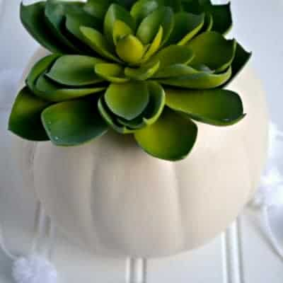 White Pumpkin Succulent Centerpiece