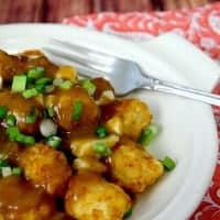 Tater Tot Poutine is an American spin on Canadian bar food that's a bite of deliciousness!