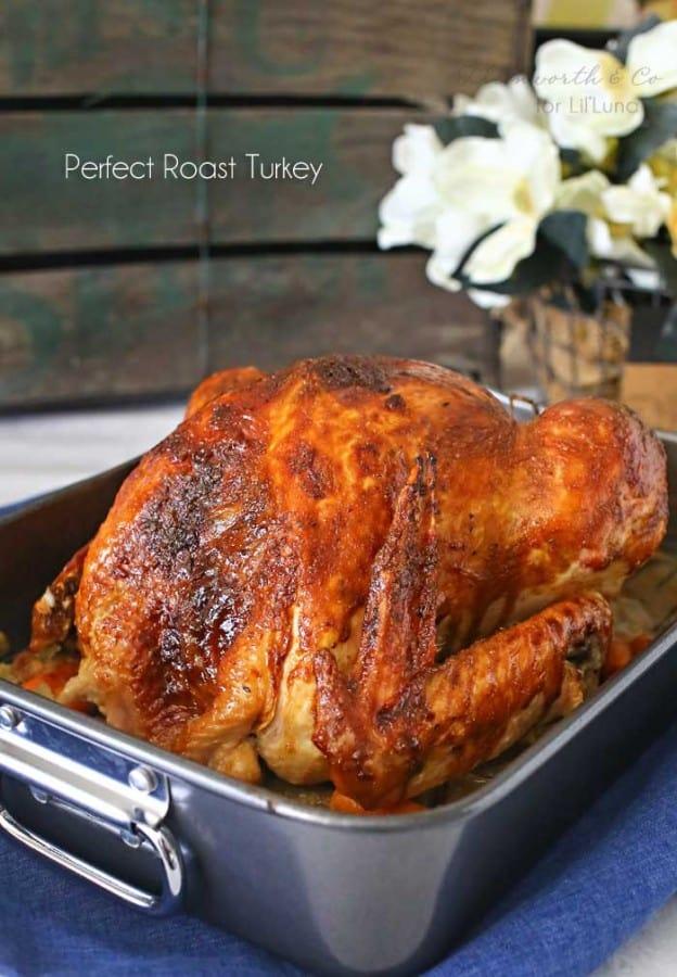 How to Roast the Perfect Turkey - Lil Luna