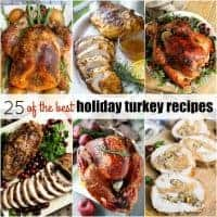 Make your holiday dinner extra special with 25 of the Best Holiday Turkey Recipes! These birds are loaded with flavor and are sure to be the star of you meal!