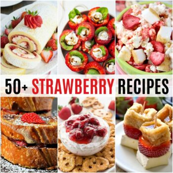 Dive into summer with 50+ Strawberry Recipes! These sweet fruits aren't just for dessert - everything from breakfast to dinner is coming your way!