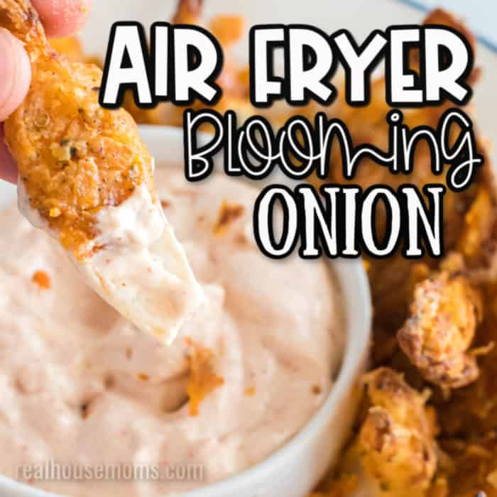 Square image of Air Fryer Blooming Onion