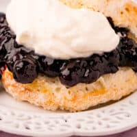 airf ryer blueberry shortcake on a plate with recipe name at bottom