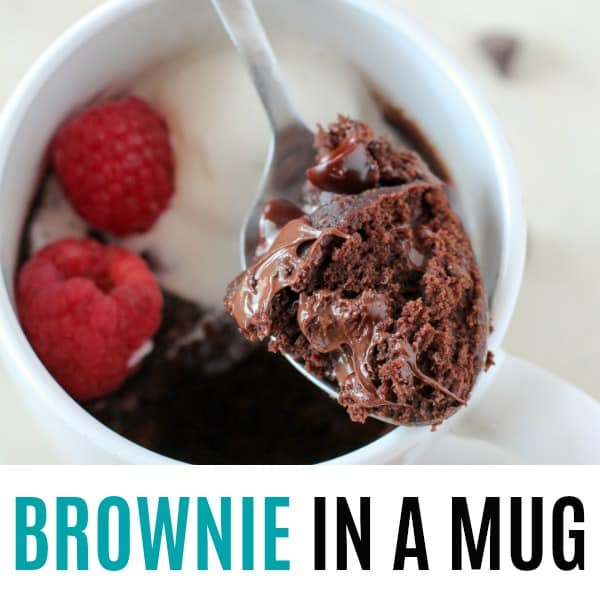 square spoonful of brownie in a mug picture with text