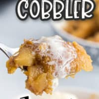 picture of piece of Crock Pot Apple Cobbler omg a fork