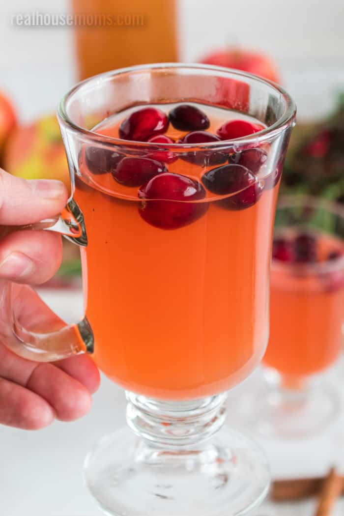 pic of Apple Cranberry cider in a glass