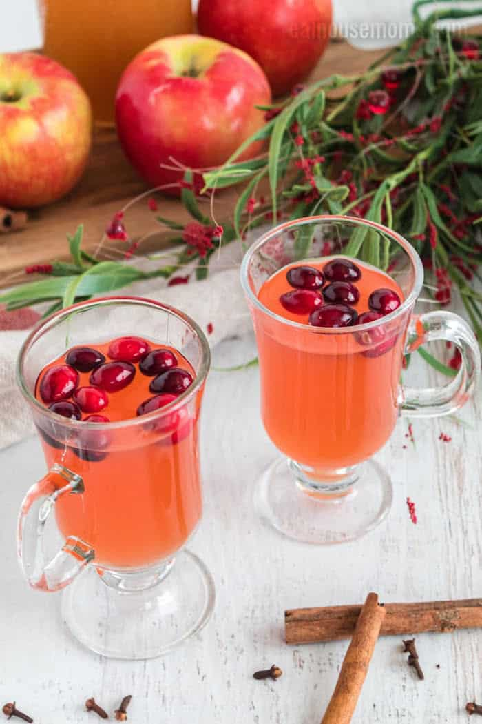 pic of two glasses filled with Apple cranberry cider