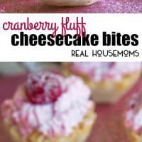 These Cranberry Fluff Cheesecake Bites are the perfect no bake dessert for the holidays!