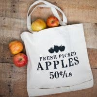 Perfect for apple picking season or daily errands, create your own DIY Apple Picking Tote!