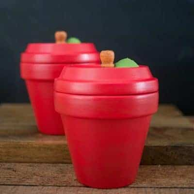 DIY Apple Terracotta Pots