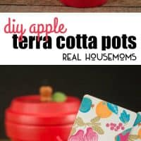 Perfect for teacher gifts and more, create these adorable DIY Apple Terracotta Pots in just a few easy steps!