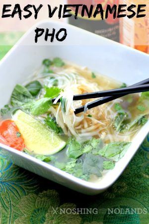 Easy Vietnamese Pho by Noshing With The Nolands (4) (Custom)