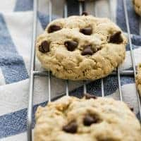 These Extra Chewy Oatmeal Chocolate Chip Cookies are easy to make and have the most perfect texture and the best flavor! These will become your go-to chocolate chip cookies.