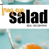 Serve Frog Eye Salad at your next barbecue party for a yummy, sweet, fruit filled side dish that will be the talk of the party!