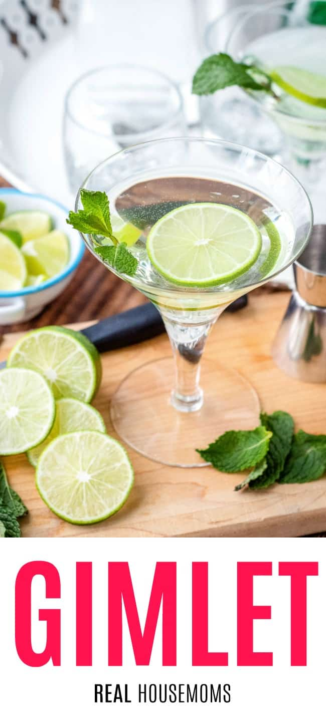 gimlet served in a martini galss with lime wheel and mint sprig