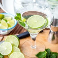 The Gimlet is a timeless cocktail made with fresh lime juice, a touch of sweetness, and flowery gin for a perfectly refreshing drink!