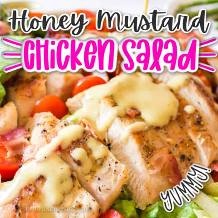 square pic of honey mustard chicken salad on a plate