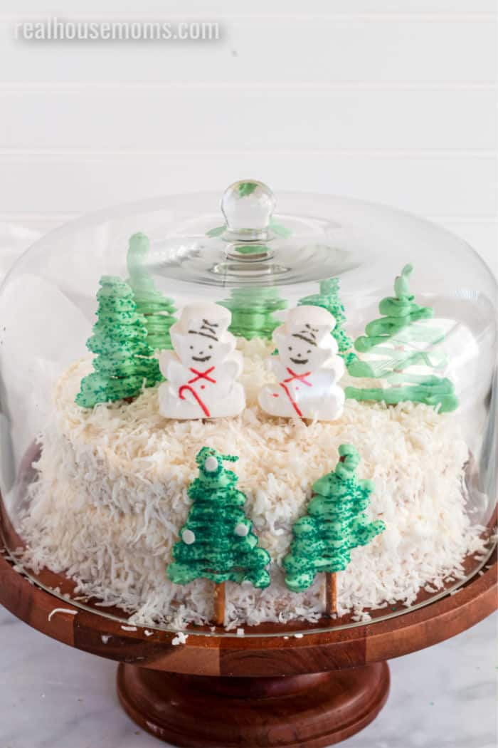 winter theme vanilla cake under a glass dome on a cake plate