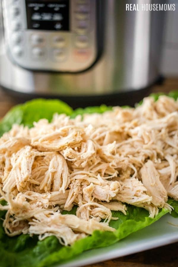 shredded chicken served on lettuce leaves on a platter