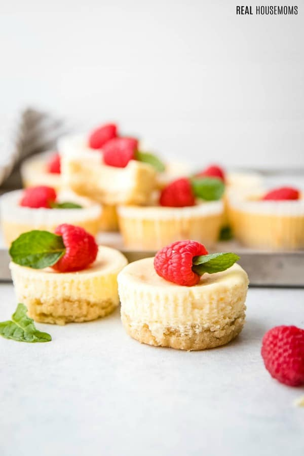 low carb cheesecake bites topped with a raspberry and mint sprig
