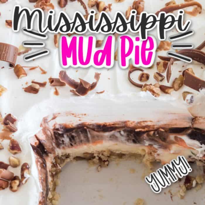 square image of Mississippi Mud Pie